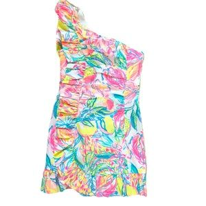 NWT Tiffani Stretch Dress in Multi Fiesta Bamba